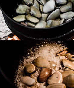 White Mussels